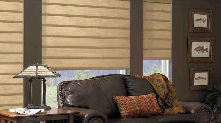 select either the timeless beauty of the hunter douglas vignette roman shades or the modern elegance